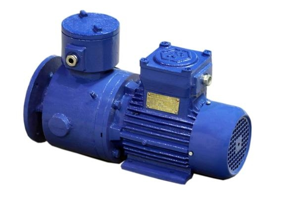 electromagnetic induction motor